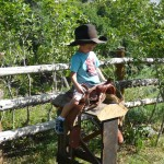 All Inclusive Activities -Western Horse Experience